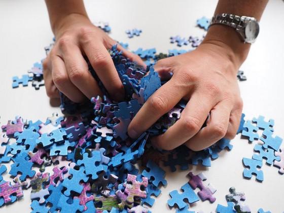 welk stukje van de puzzel heb jij?